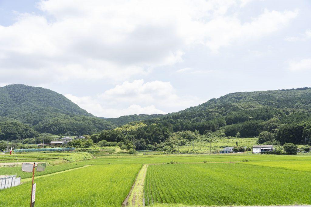 茨城県の田園風景:セカンドハウスに最適な立地条件が揃う茨城県